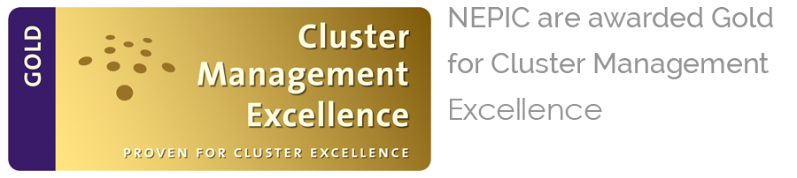 NEPIC Cluster Award