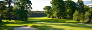 Golf_620x200a
