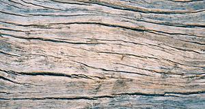 wood_300x160-fw