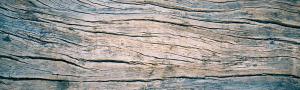 wood_1000x300-fw