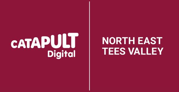 Digital Catapult NETV Logo