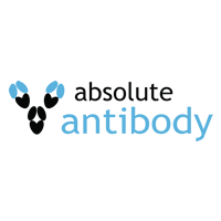 Absolute Antibody Research & Manufacturing